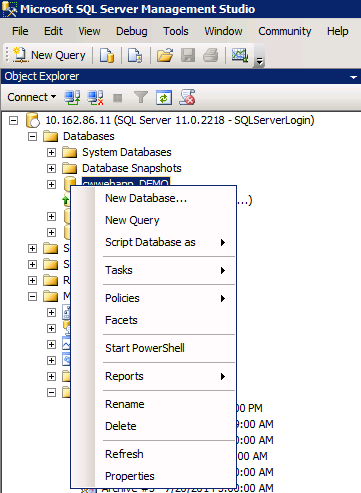 Right-click your ConnectWise database and select PROPERTIES